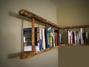 Bibliothèque échelle - Afrolivresque